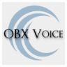 logo for the Outer Banks Voice