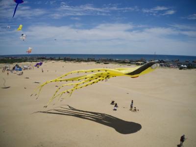 Kitty Hawk Kites - Nags Head