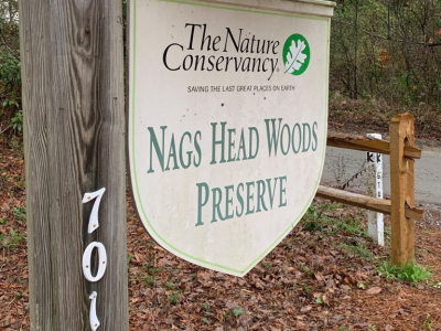 Nags Head Woods Preserve