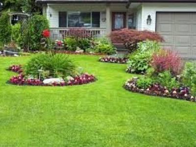 Carolina Landscaping & Tractor Service