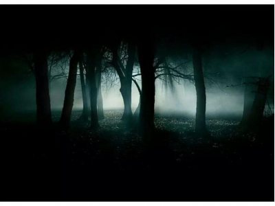 Wicked Woods Haunted Attraction